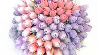 Plastové tulipány skladem