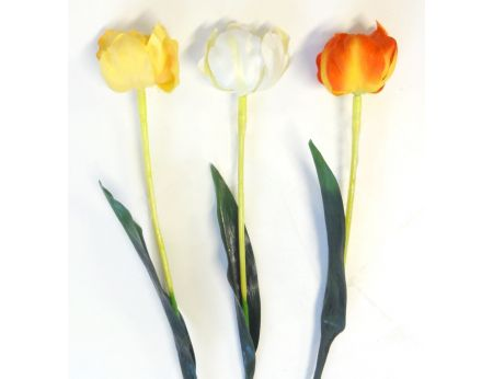 Tulipány - 3ks