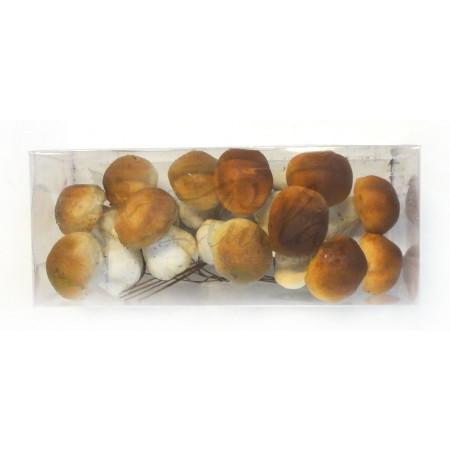 Krabička hříbků